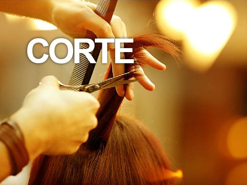Lavado tratamiento + Corte de cabello + Tratamiento nutritivo